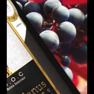 Vinho, Queijo e Compota