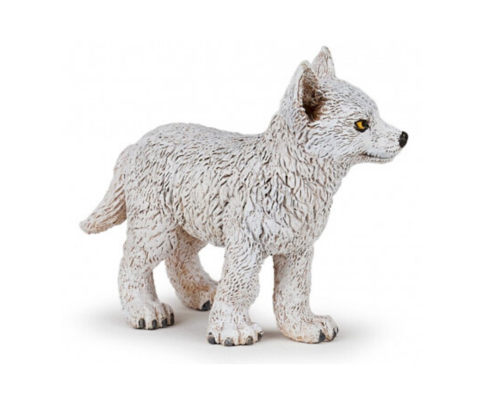 Lobo Polar jovem