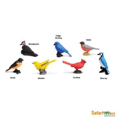 Aves de Jardim [Tubo 11 peças]