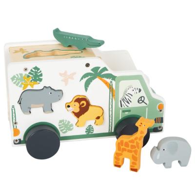 Carro Safari