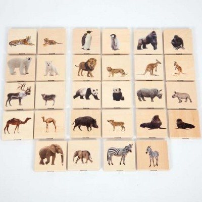 Animais selvagens - jogo de pares [madeira]