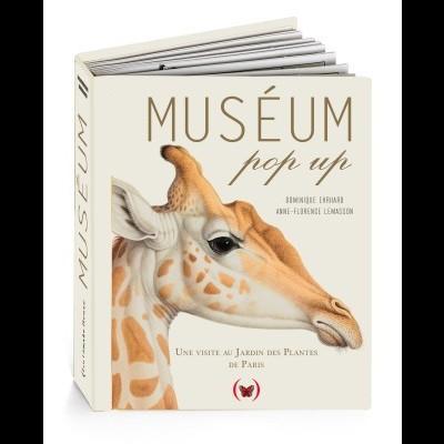 Museum pop-up