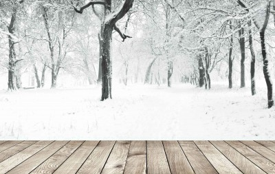 Promoção de Inverno