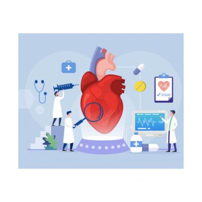 Sistema Cardiovascular e Circulatório
