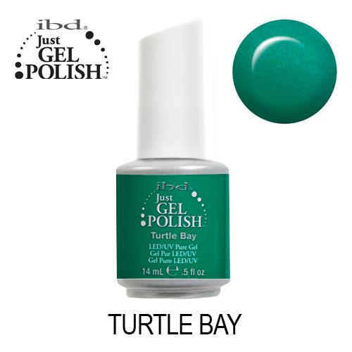 IBD 56524 – Turtle Bay