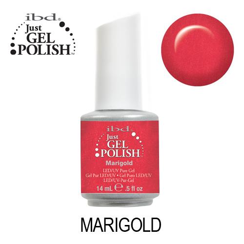 IBD 56551 – Marigold