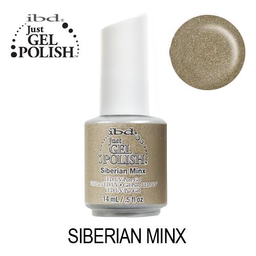 IBD 56912 – Siberian Minx