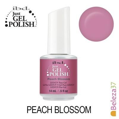 IBD 56773 – Peach Blossom