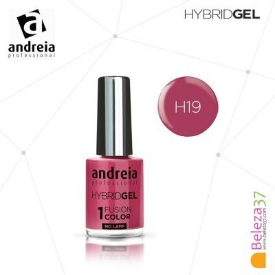 Hybrid Gel Andreia – Fusion Color H19