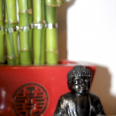 Cristal Lapidado Transparente de Feng Shui