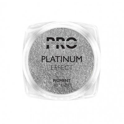 Pigmento Platinum Constance Carroll - Silver 10