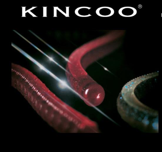 Amostra Deps Kincoo