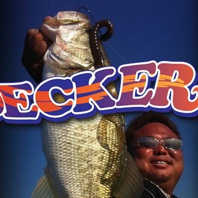 Amostra Geecrak Decker 14