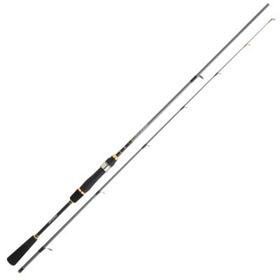 Cana Daiwa Regal 192MHFS