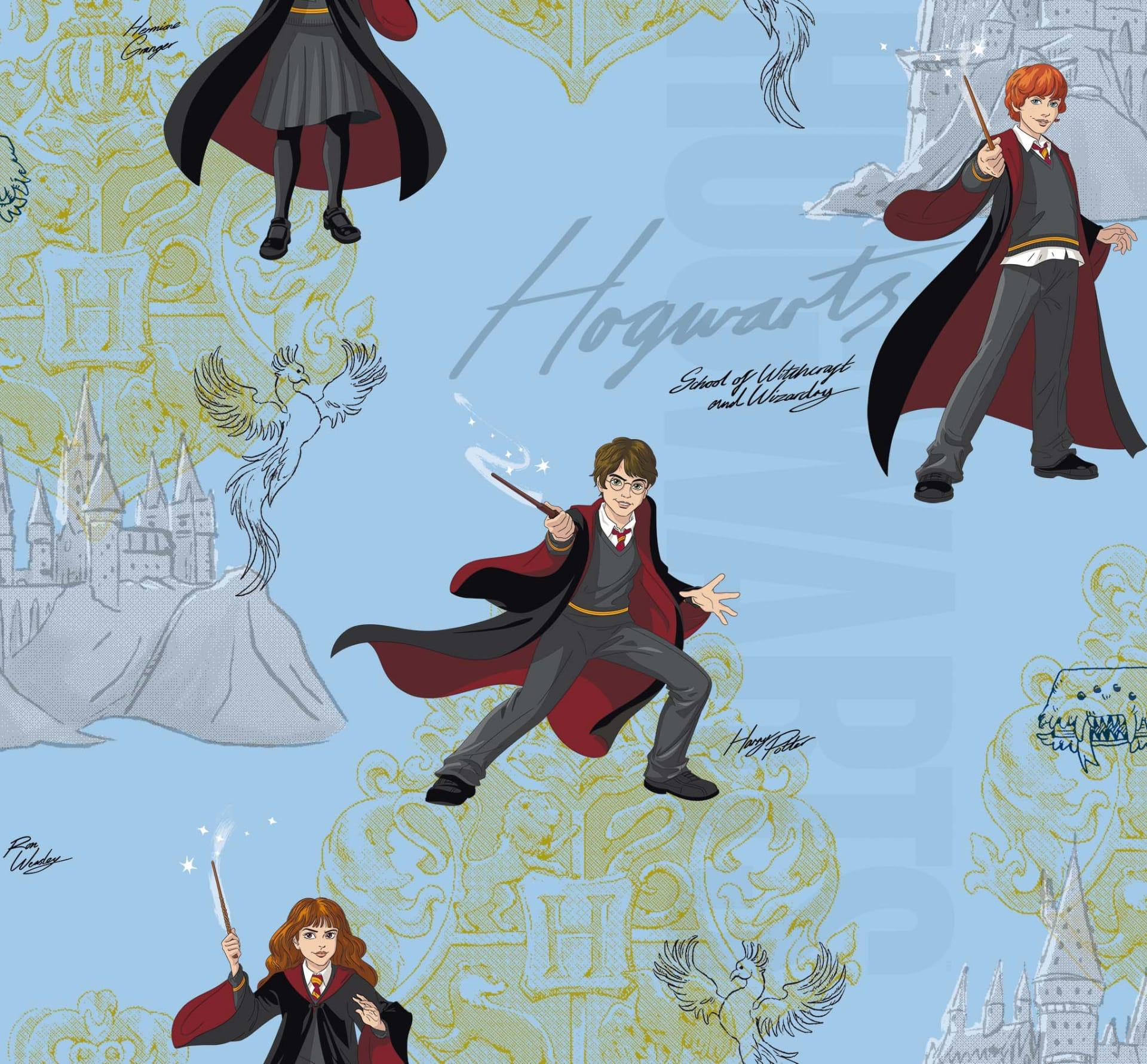 Harry Potter - Wizarding