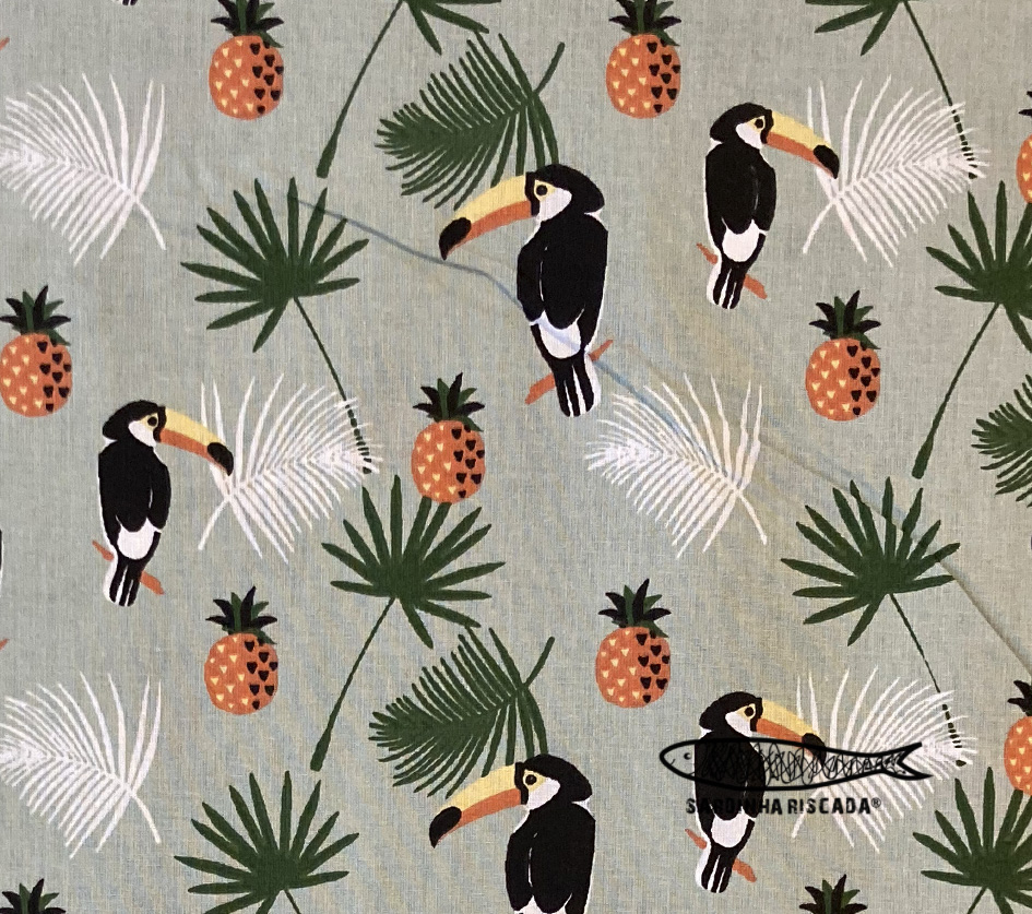 Tucano e ananás