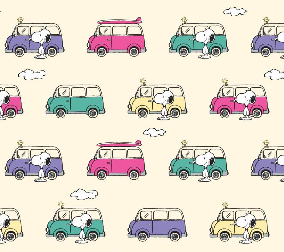 Snoopy - Campervan Adventure