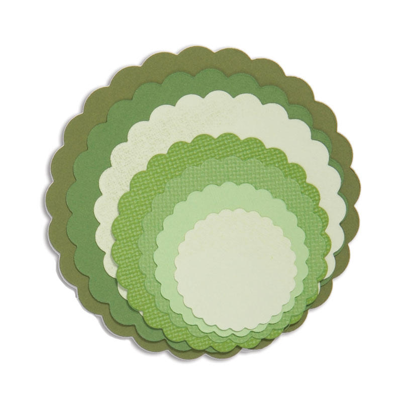 Circles Scallop