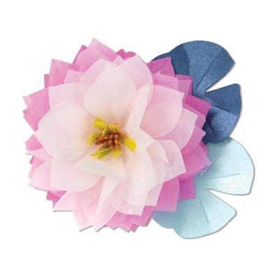 Lotus by Brenda Walton