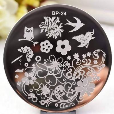 Placa BP-24