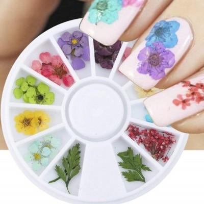 Rodinha Flores Secas