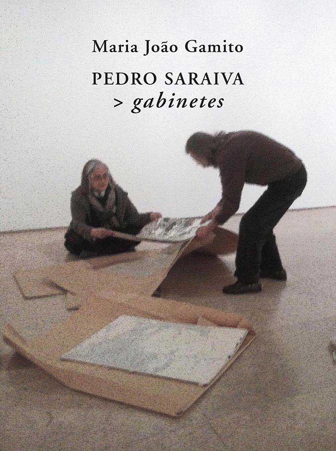 Pedro Saraiva > Gabinetes