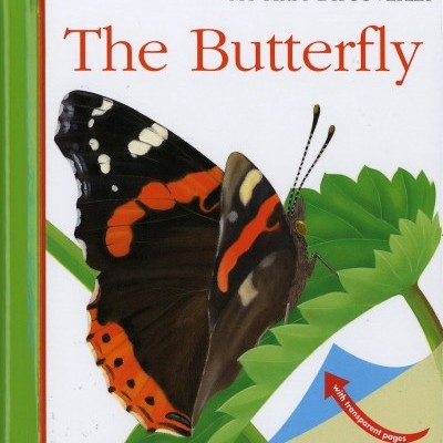 THE BUTTERFLY: My First Discoveries