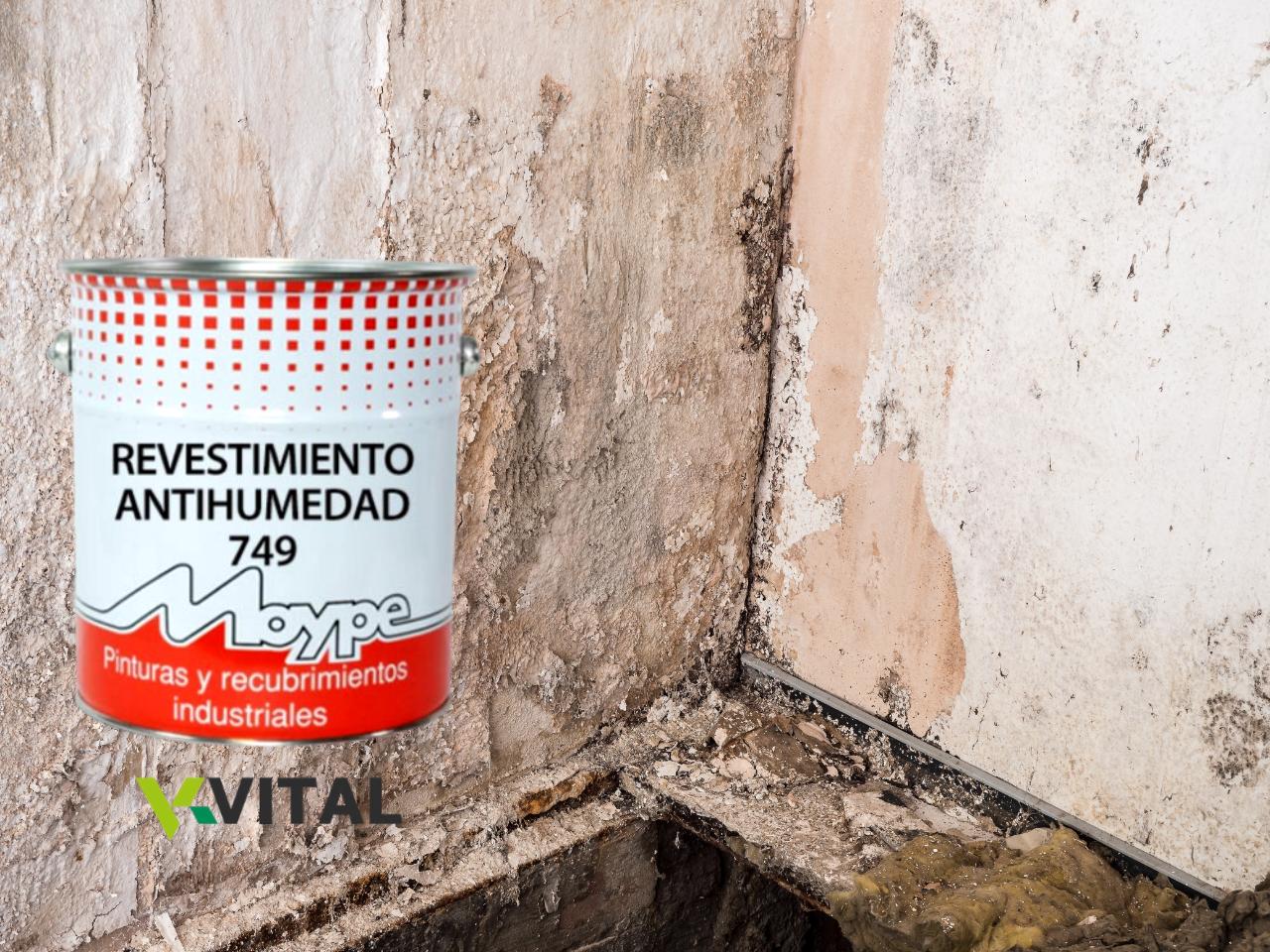 Salitrex - Anti-humidade