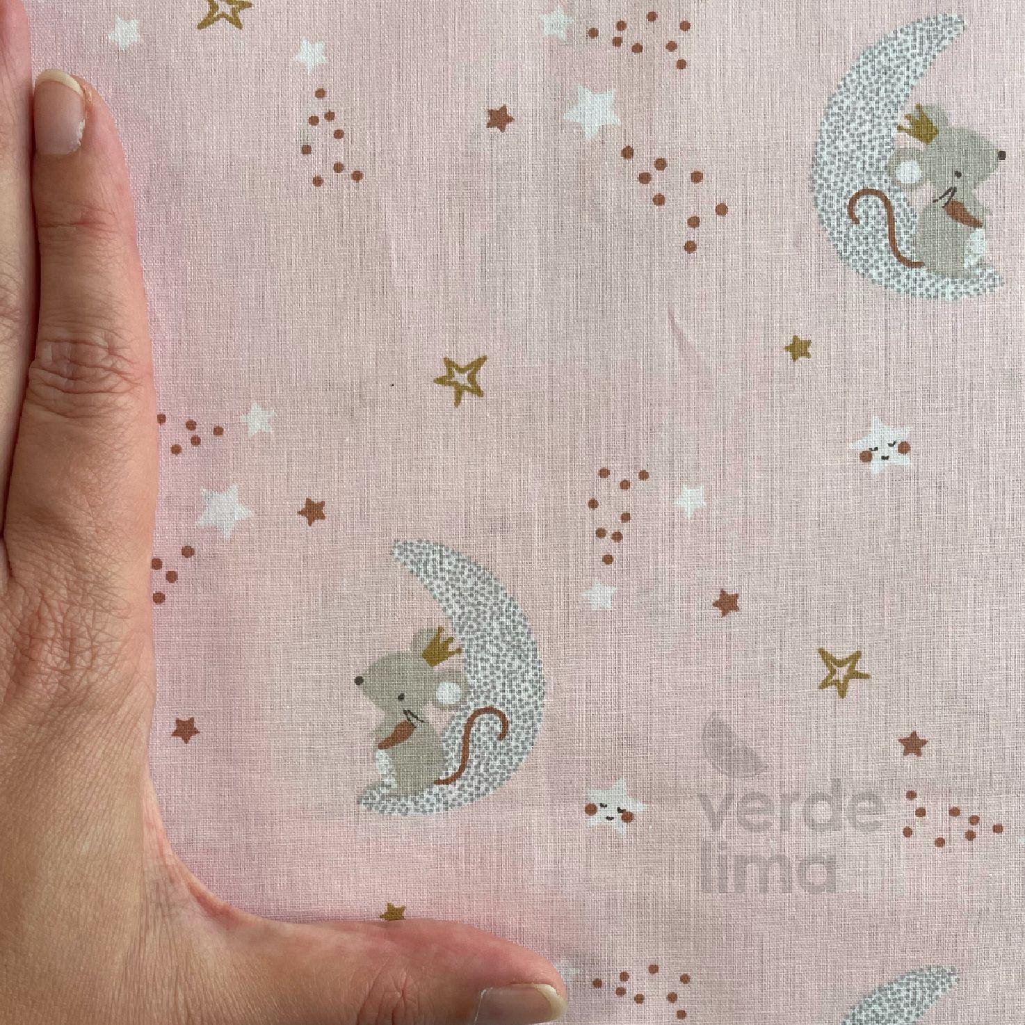 Ratinho nas estrelas - Ratinho na lua fundo rosa