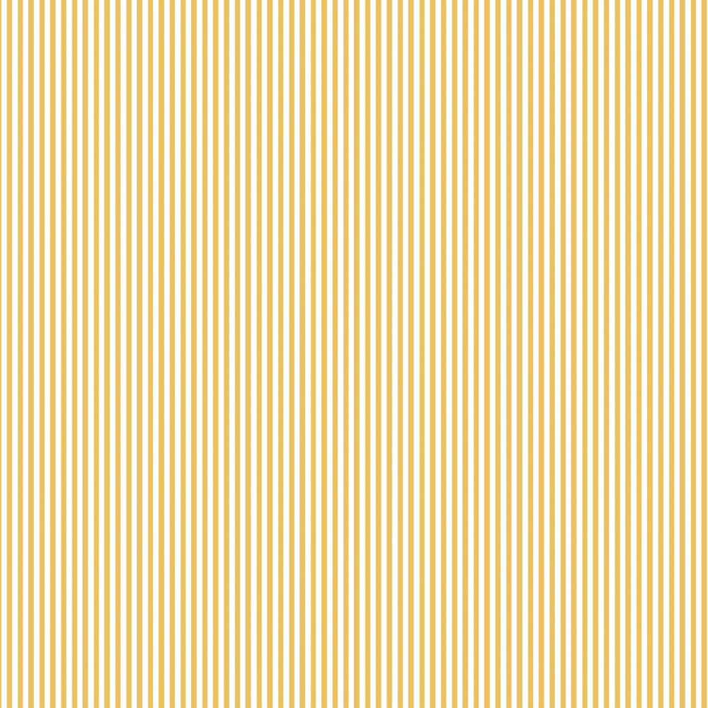Basics and Colors - Listrado amarelo