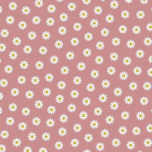 Daisy Flower - rosa