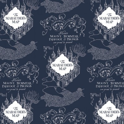 Harry Potter - Blue Marauder's Map