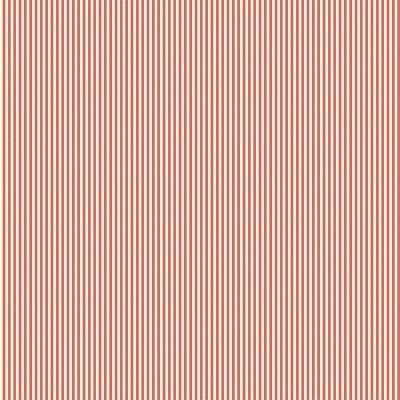 Basics and Colors - Listrado pink