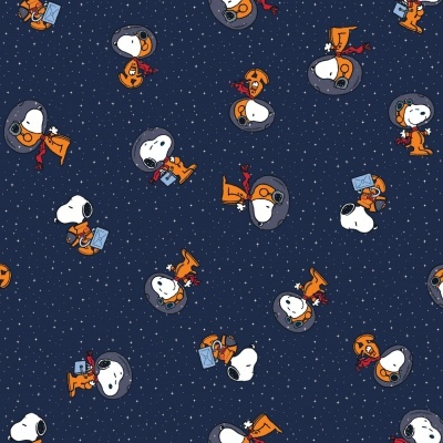 Snoopy - astronauta