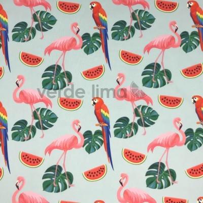 Licra - Flamingos e papagaios