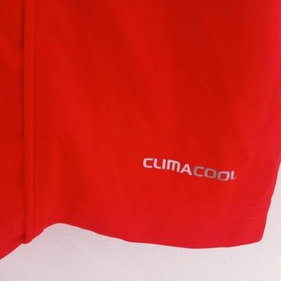 NEW SL Benfica Training Shirt 2010-2011 (XL)
