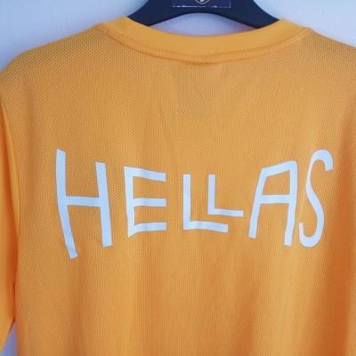 "Hellas Verona Training Shirt 2016-2017 (L) ""Very Good"""