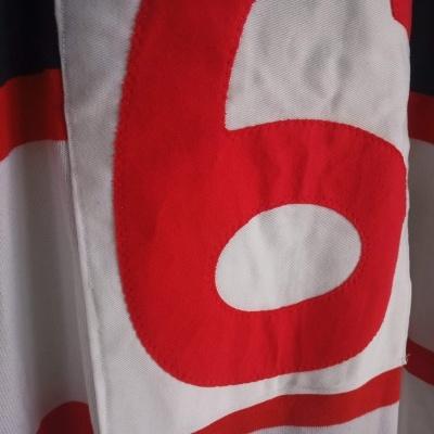 "Matchworn North Sydney Bears Rugby League Shirt #6 (L) ""Good"""