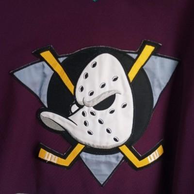 "Anaheim Mighty Ducks Ice Hockey NHL Jersey #22 (M) ""Very Good"""