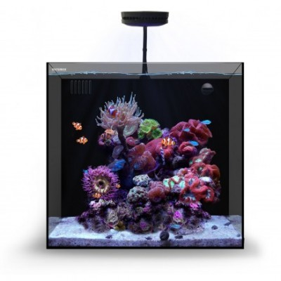 WaterBox Cube 20