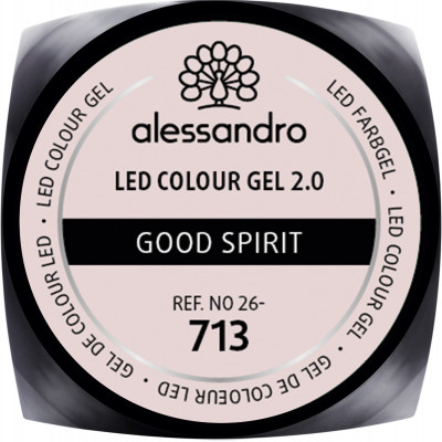 LED Colour Gel 2.0 713 - Good Spirit 5g